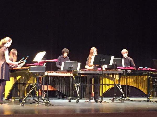 The WLHS Percussion Concert